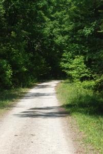 06road_start_trail