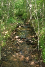 11middle_creek