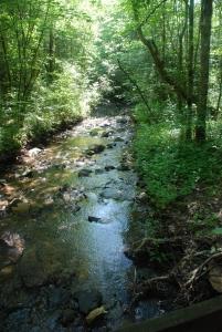 17mill_creek