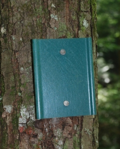 20green_trailmarker