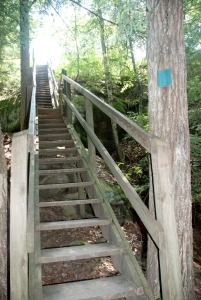 57north_arch_steps