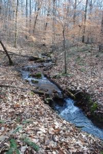 Lee Creek