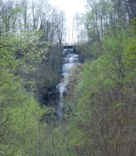 44amicalola_falls