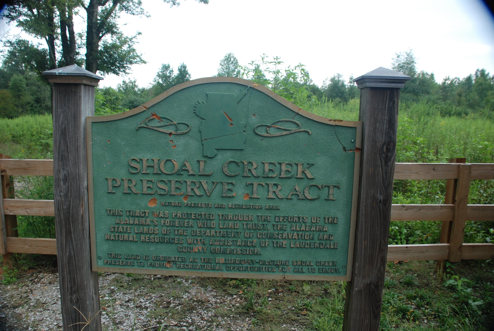 Shoal Creek Preserve A New Favorite Place Woodlands And