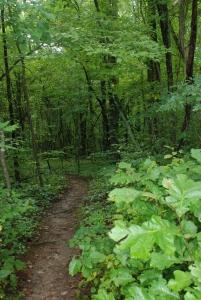 05greenway_trail