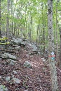 04flatrock_descent