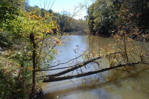 17flint_creek