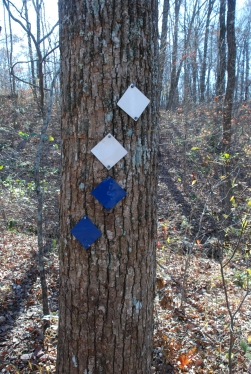 11trail_markers_sharp_bend