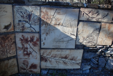 10cheaha_trailhead_tiles