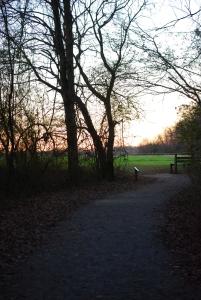 03atkenson_trail_field