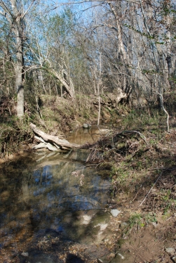 46unnamed_main_creek