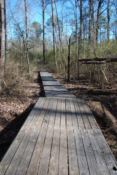 30terrell_conn_boardwalk