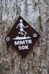 68mountain_mist_trail_run