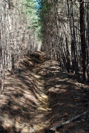 23rutted_trail