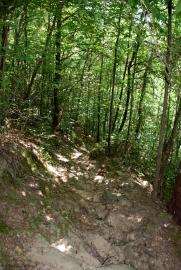 04picnic_trail_descent