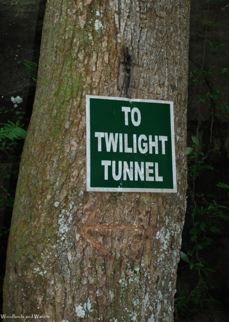 17sign_to_twilight_tunne