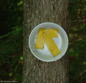 18improvised_trail_marker