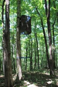 32first_treestand