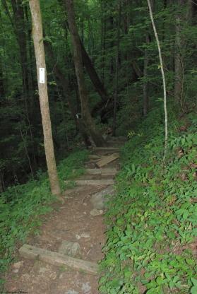 74steps_steep_incline