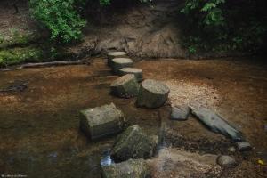 58tumbled_steppingstones