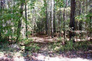 08nubbin_creek_trailhead