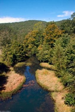 Terrapin Creek from Chief Ladiga Trail