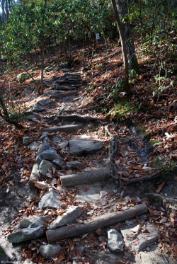 13log_stone_steps