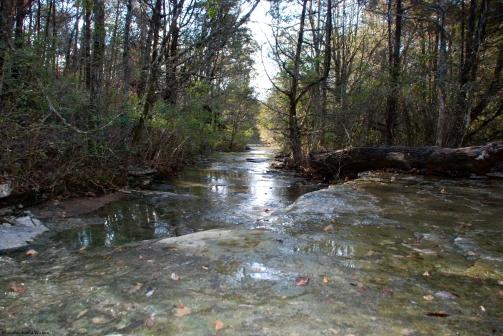 Fagan Creek, Monte Sano Preserve