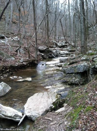 Creek in Monte Sano State Park