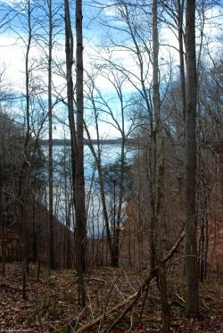 09lake_through_trees