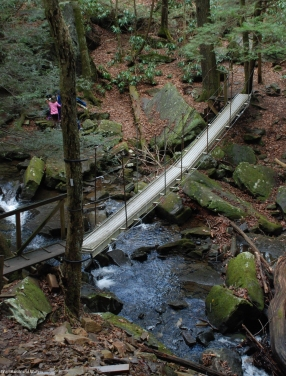 17suter_falls_bridge