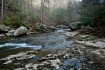 42collins_river_upstreamfromfalls