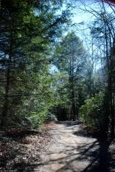 08footbed_toward_obs_area