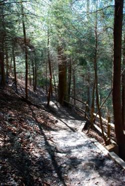 13downstream_trail_switchback