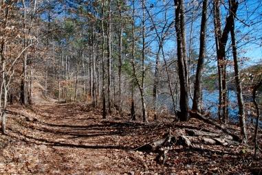 TVA Honeycomb trail