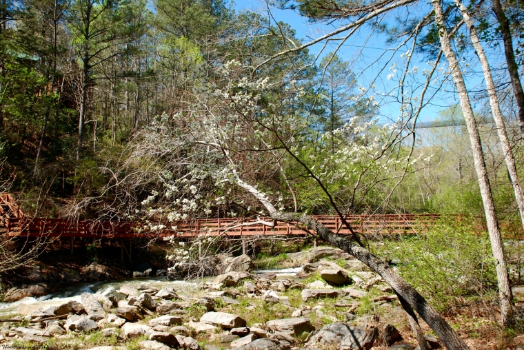 snake_creek_bridge_dogwood