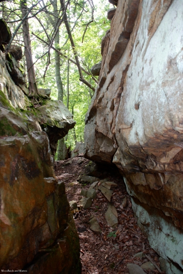 Cumberland Trail, Little Soddy Gorge section