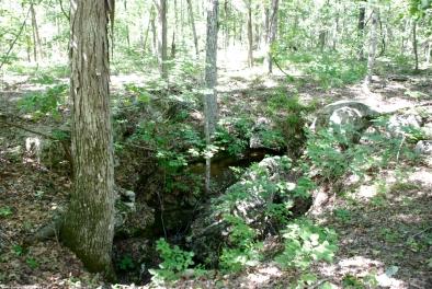 66pond_trail_sinkhole