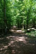 37slave_quarters_trail