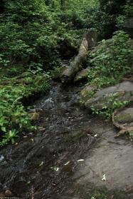 07little_creek