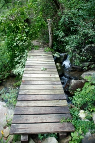 Lodge Creek bridge