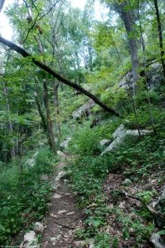 28upper_trail