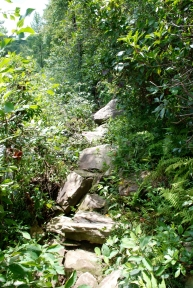 even rockier trail