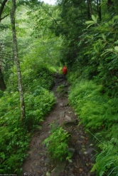 33ruth_on_rainy_trail
