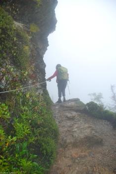 12ruth_foggy_trail