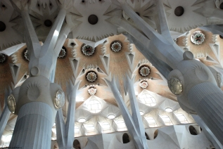 Ceiling view, Sagrada Familia