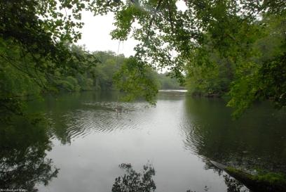 12byrd_lake_view