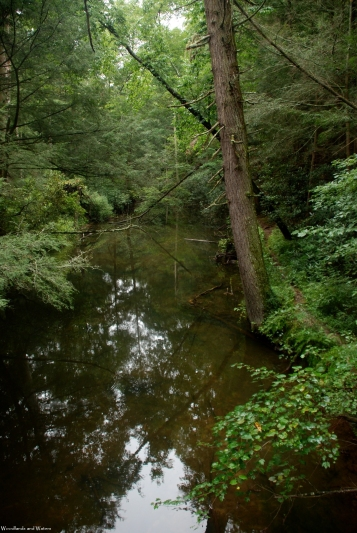 25byrd_creek_from_bridge