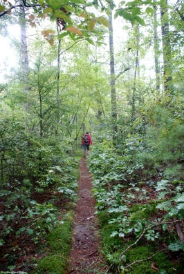 32narrow_trail_rain