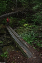 58shingled_bridge